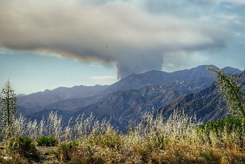 Angeles Forest Sand Fire Day 1