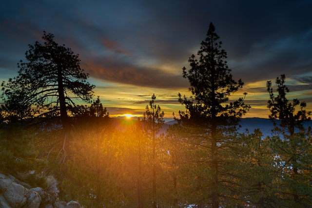 Sparkle Like Sunshine Angeles Forest Mt. Pinos Sunrise Southern California