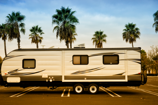 Sparkle Like Sunshine Travel Trailer Life Palm Trees